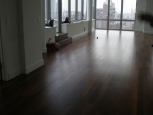 Home Staging New York Views