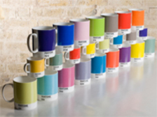 Whitbread Wilkinson Pantone Mugs