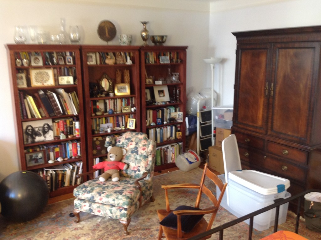 Bookcases and Living Room